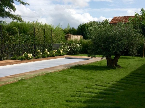 jardin zen amberieu design jardin japonais toulouse